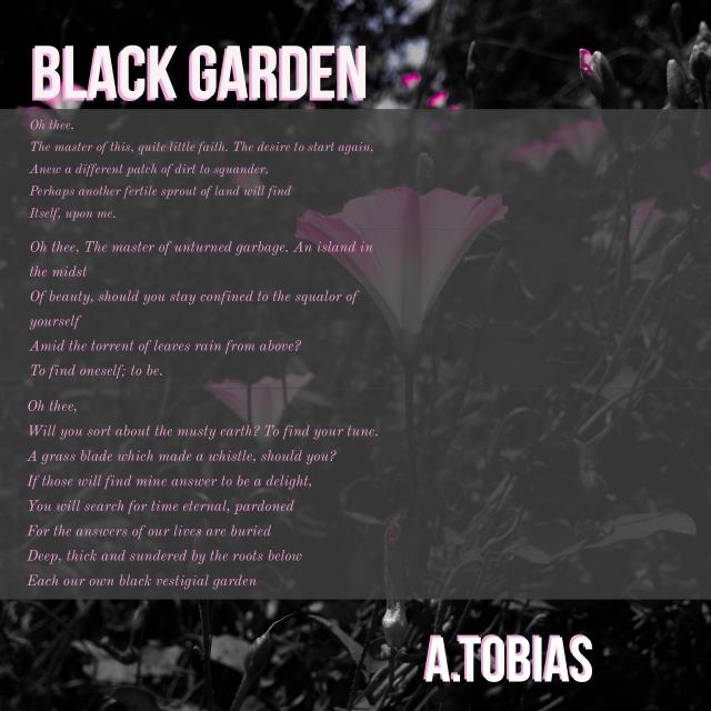 2018.2.22- Black Garden.jpeg